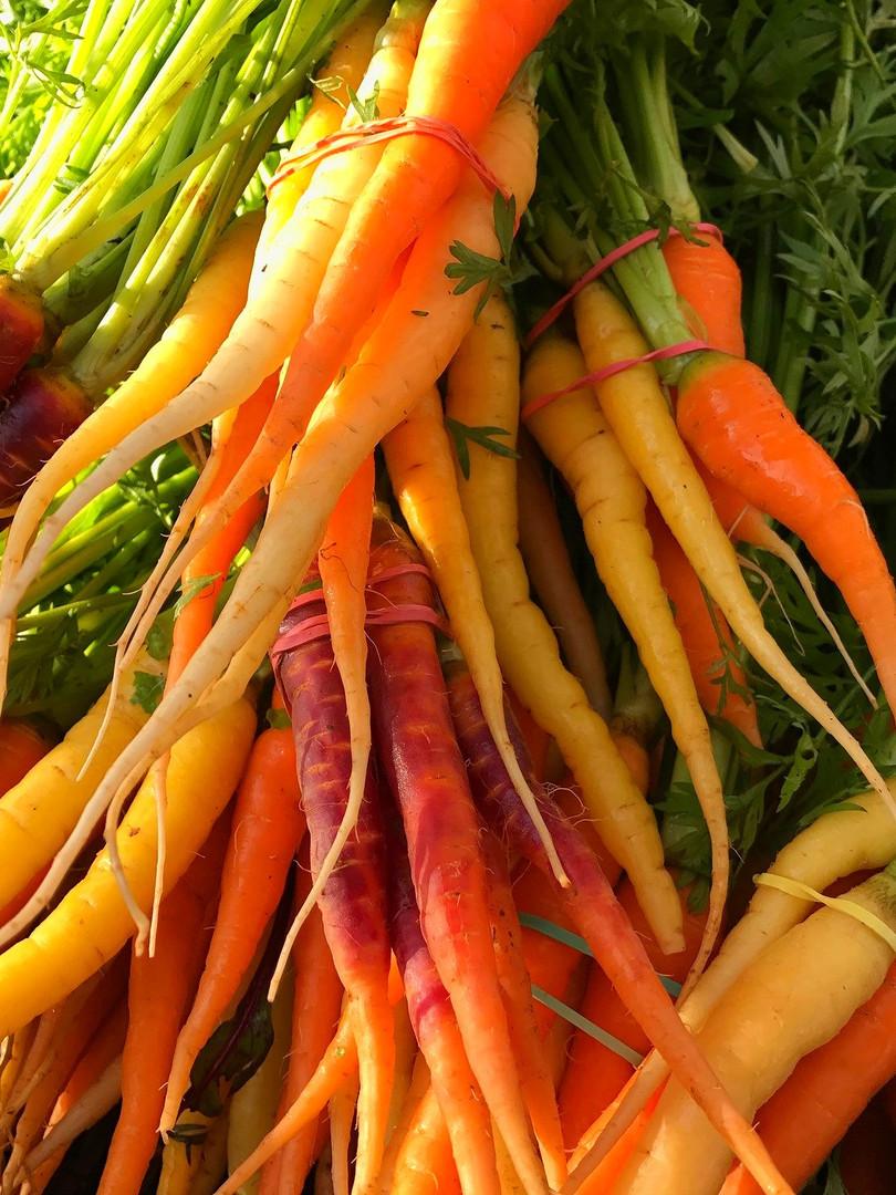 Carrots New Legacy2_edited.jpg