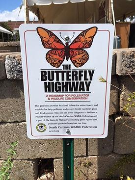 Butterfly highway.jpg