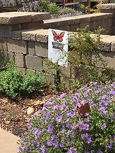 Butterfly highway2.jpg