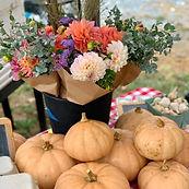 pumpkins and flowers wild hope.jpg