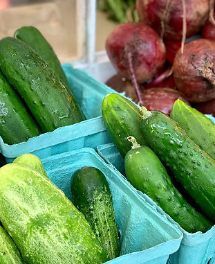cukes and red onions copper queen.jpg