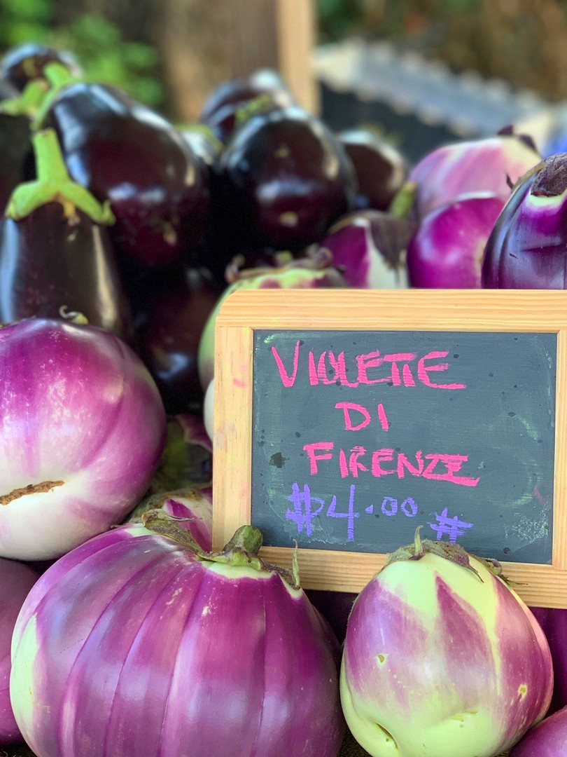 eggplant sammy_edited.jpg