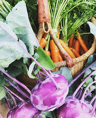 kohlrabi and carrots wild hope.jpg