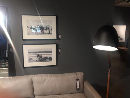 Robyn Mills Prints in Weylandts