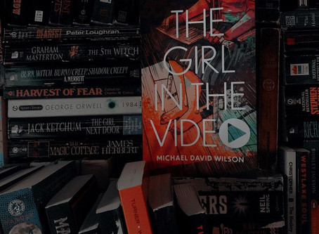 The Girl in the Video - Michael David Wilson