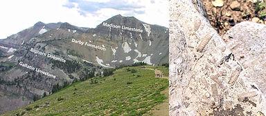 sed-layers-limestone.jpg
