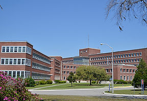 Ralph H Johnson VA facility.jpg