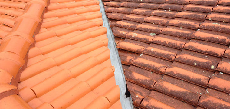 Clear Solutions Roof Cleaning 5.jpg