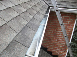 Clear Solutions Gutter Cleaning.jpg