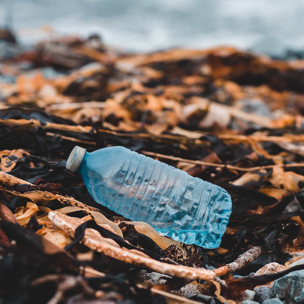 single use plastic bottle on beach - recycled polyester