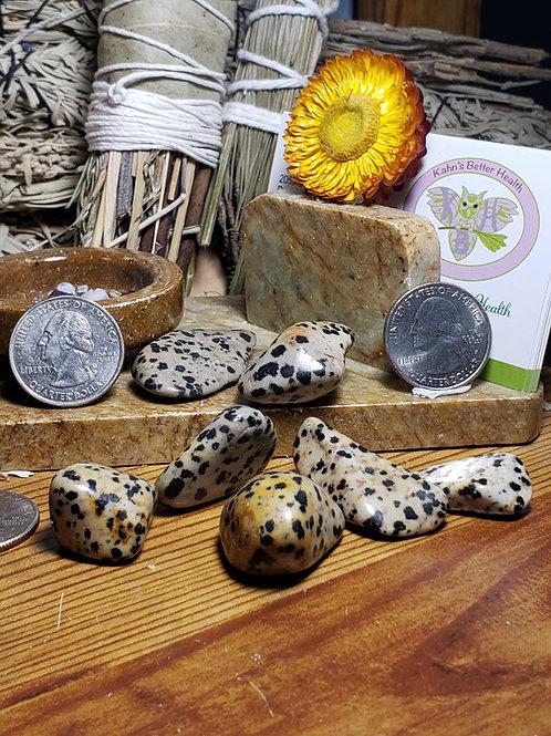 Dalmation Jasper Stone