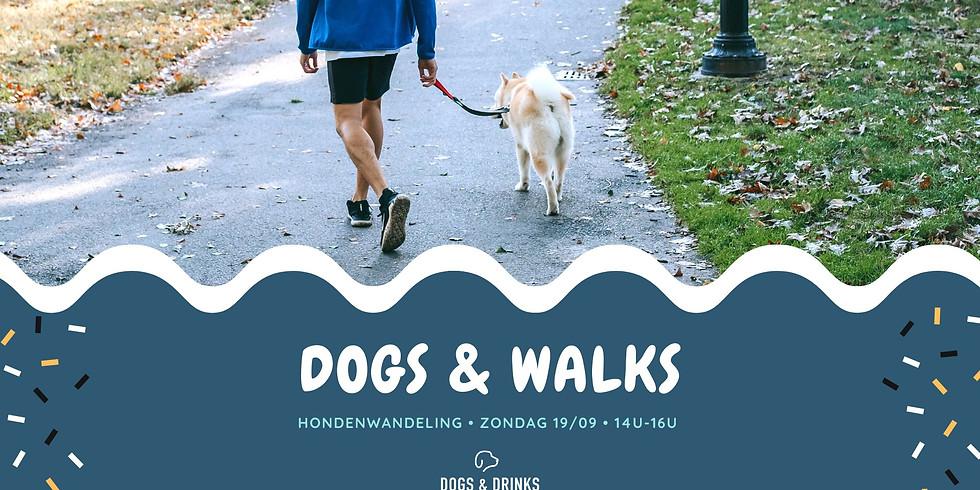 Dogs & Walks