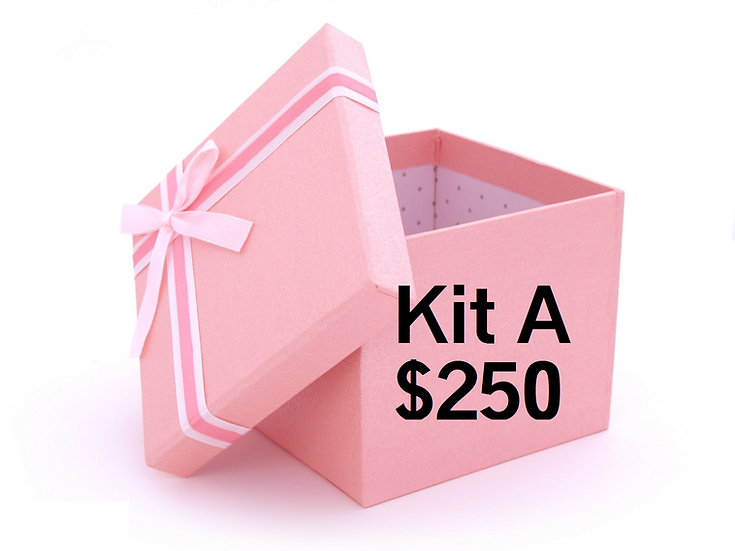 Business In a Box - Kit A (Bronze)