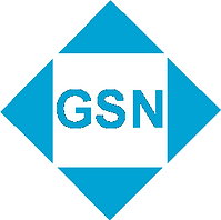 logo GSN 2.png