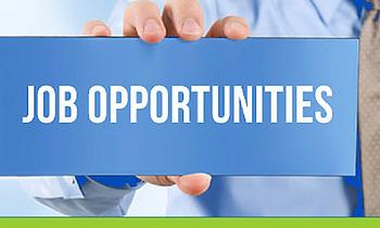 Job-Opportunities-1.png