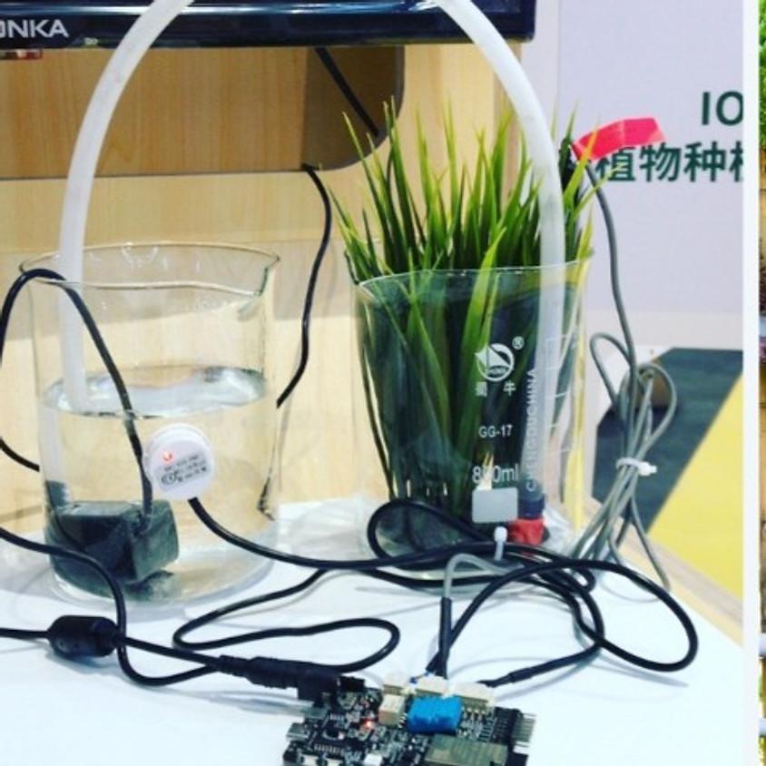 חקלאות חכמה - גידול ביתי באמצעות תכנות וחיישנים - הרצאה מקוונת
