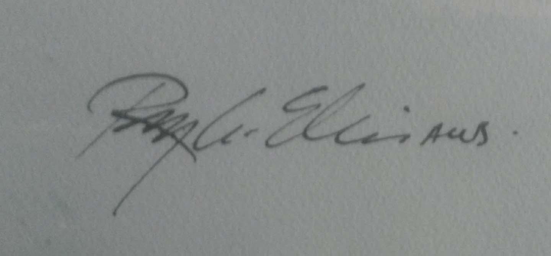 Skier Signature