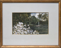 Clematis by the Cove-framed