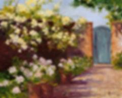 Lady Banks Roses-D-.jpg