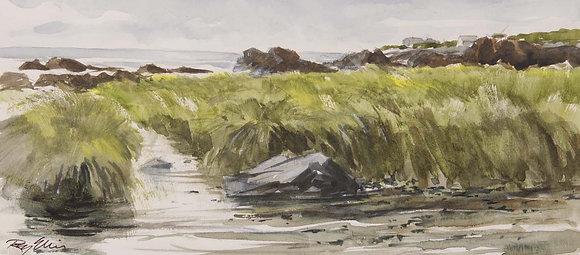 Cape Elizabeth Marsh