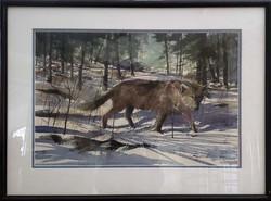 Montana Wolf-framed