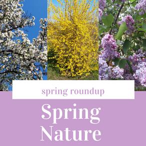 Spring Nature Photo Roundup