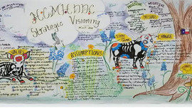 HCMHDDC Graphic Facilitation