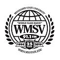 WMSVLogo_Shirt_25thAnniversary.jpg