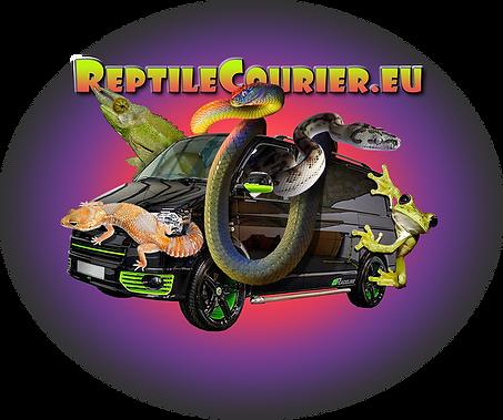 Couriers - REPTILECOURIER.EU | Romford, UK | Royalracksandmorphs