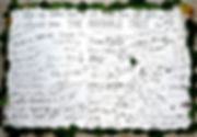 Oak Ink signatures.jpg