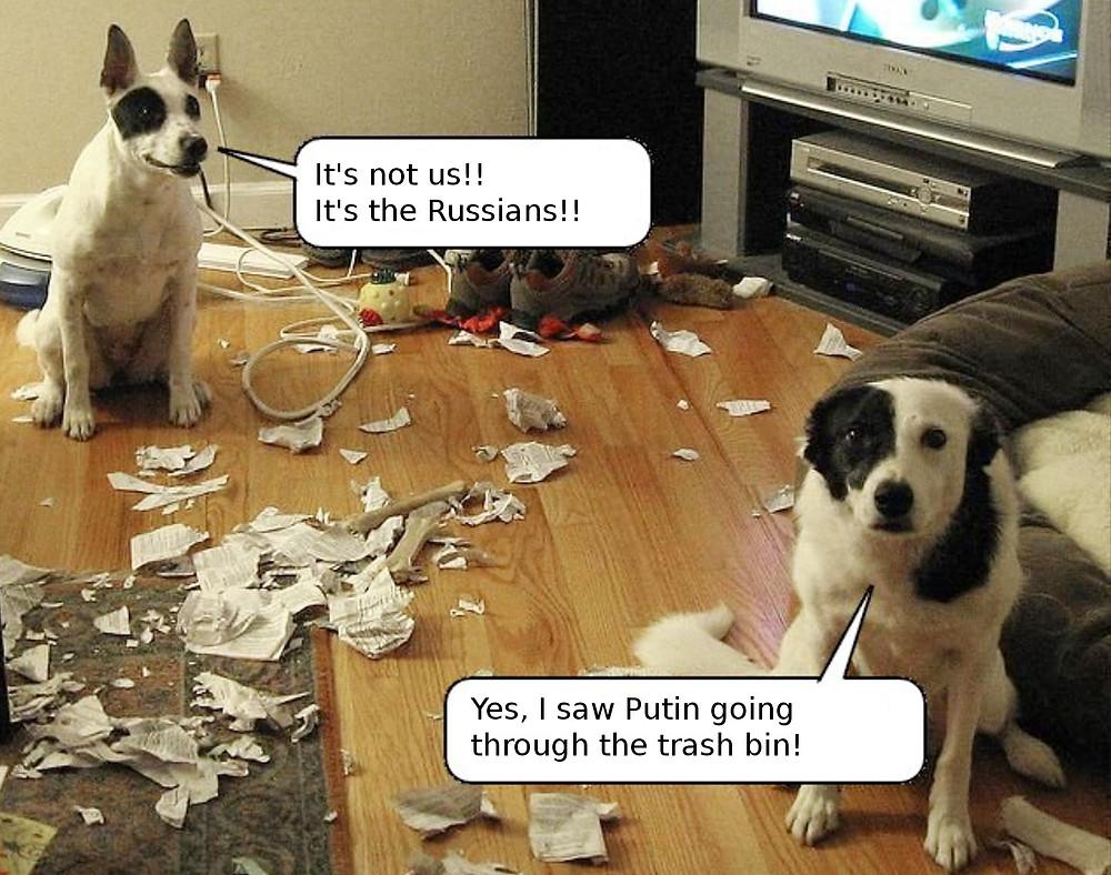 Это сделали русские. Путин опрокинул ведро
