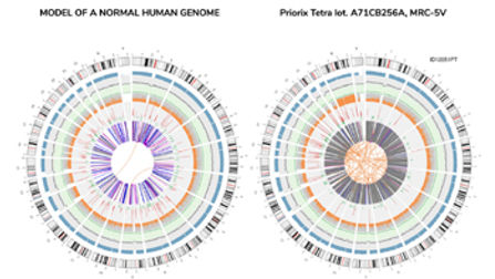 human-genome-sequencing-vaccines-mrc-5.j