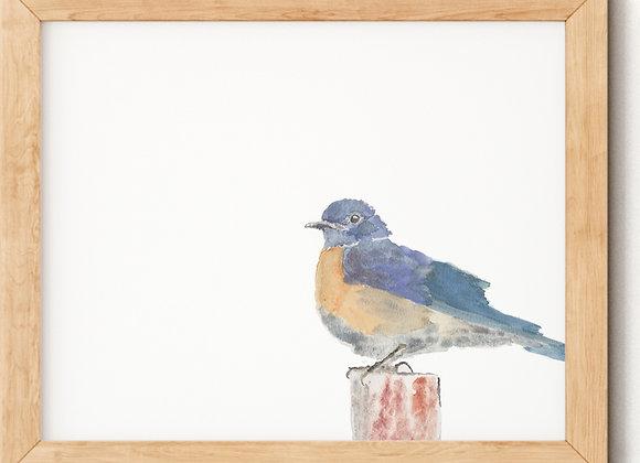 """Framed Watercolor """"Little Blue"""" Blue Bird Print"""