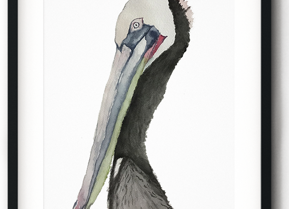 Watercolor Pensive Pelican Print
