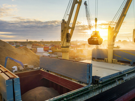 Dry Bulk Shipping:  A History of the Last Decade and Positive Predictions for The Year to Come