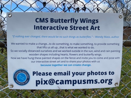 Send us your Butterfly Wings photos!!
