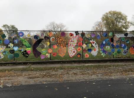 CMS Butterfly Wing Project 2020