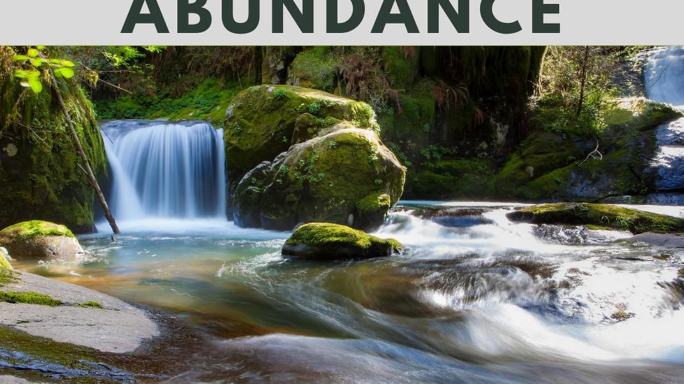 Stream of Abundance