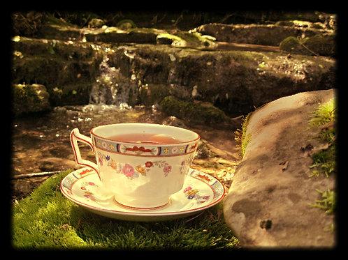 Lyme Stage 2 Tea