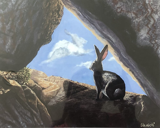 RABBIT'S VISION IN THE PAINTED CAVE