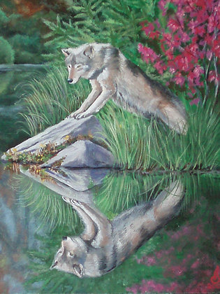 WOLF'S REFLECTION