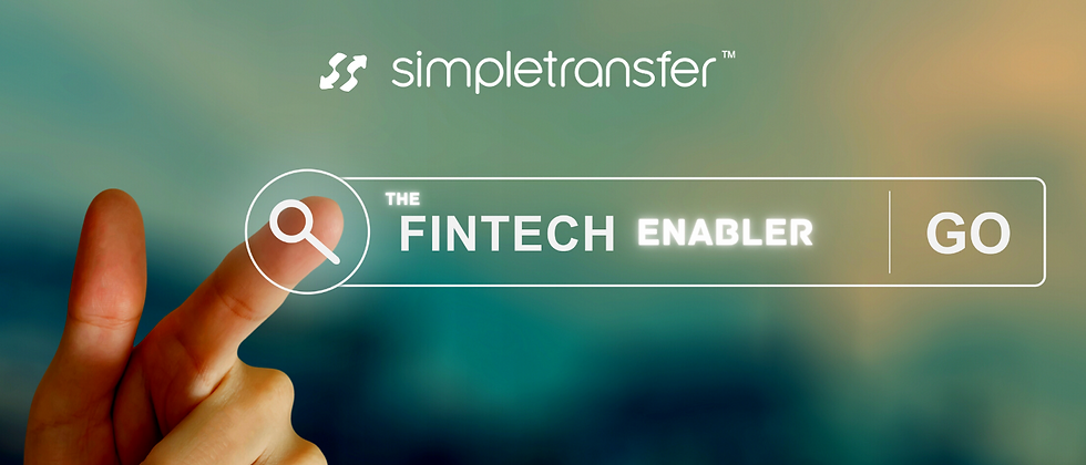 Copy of The fintech enabler.png