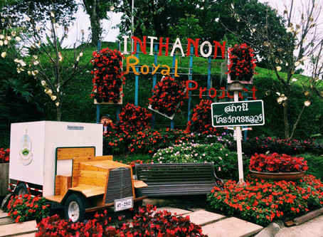 A Guide to Thailand: Chiang Mai