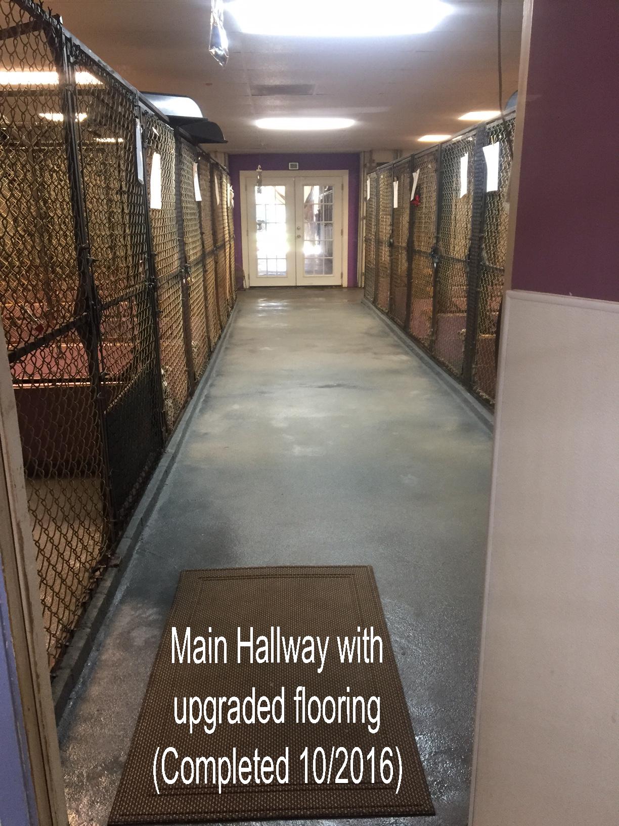 Hallway Upgrade