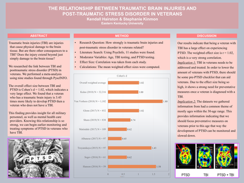 The Relationship between Traumatic Brain Injuries and Post-traumatic Stress Disorder in Veterans