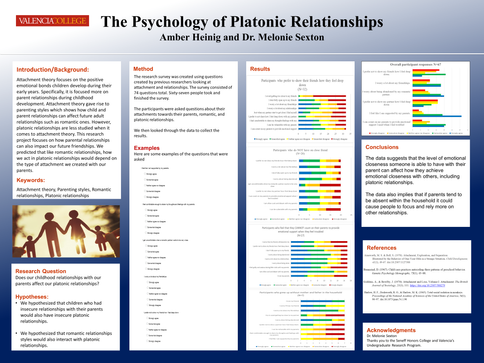 The Psychology of Platonic Relationships