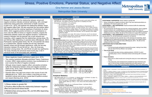 Correlating Factors Among Stress, Negative Affect, Positive Affect and Parental Status