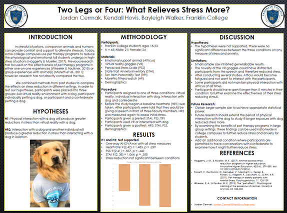 Two Legs or Four: What Relieves Stress More?