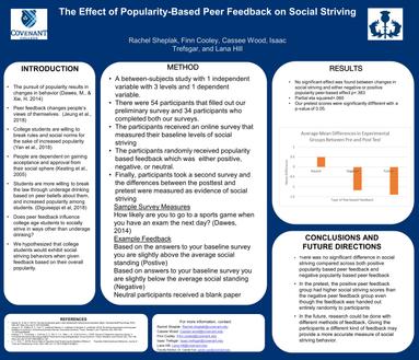 Effect of Feedback on Social Striving Behaviors