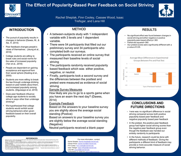 Effect of Feedback on Social Striving Behaviors